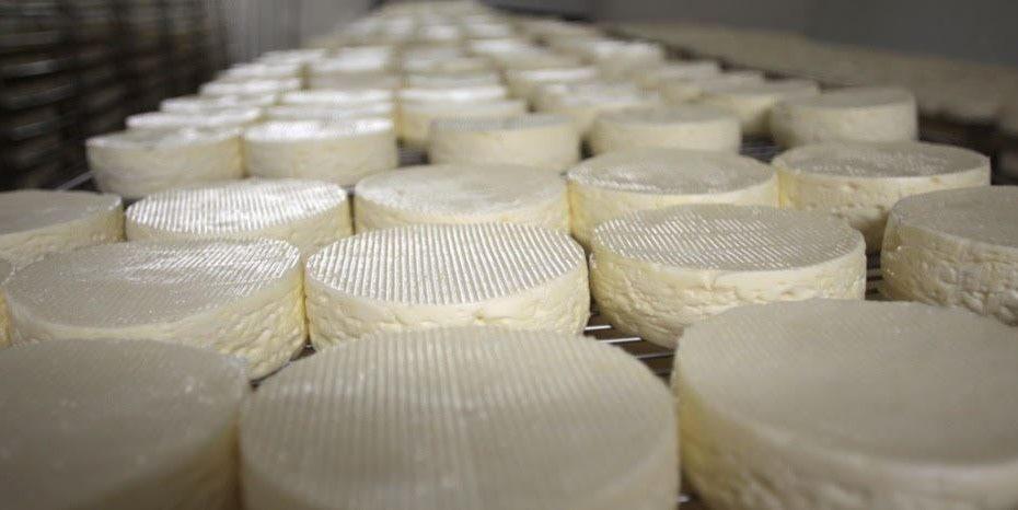 queijo chorão