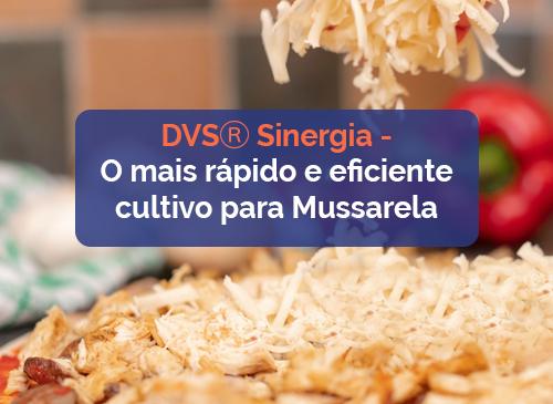 Fermento DVS® Sinergia