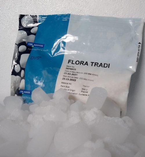 Fermento DVS® Flora TRADI